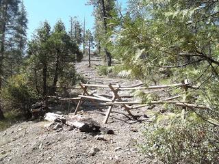 donamadorsb 249 restoration tahoe nf.ss