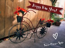 Happy-New-Year-SM-Spoke-bike-1024x768
